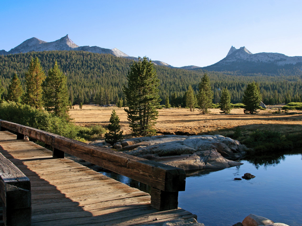 yosemite single parents Entrance fees yosemite national park changes entrance fee to address infrastructure needs & improve visitor experience seven-day pass if entering via.